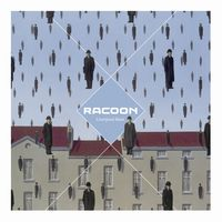 61491 racoon liverpool rain medium 1365636723
