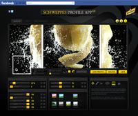 80850 schweppes profile app 2 main medium 1365643777