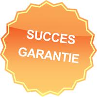 83836 succes  medium 1365624458