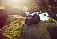 95456 d7100   camera outdoors medium 1365655965
