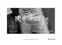 41551 the bulge biggest medium 1365661881