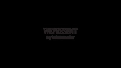 WePresent_byWT (2)-03