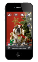 80836 smartcampro christmasdog black solo medium 1365621049
