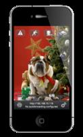 80836 smartcampro christmasdog black solo medium 1365621049