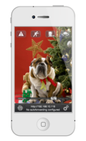 80837 smartcampro christmasdog white solo medium 1324035072