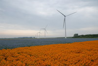 78374 windparkannavosdijkpolder2 medium 1365648632
