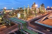 80804 rotterdam nexbtl plant night2 6910 medium 1365638308