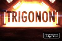 80430 trigonon medium 1365650492