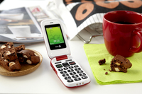 80566 doro phoneeasy 610 red on christmas table medium 1365645021