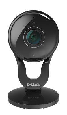 223555 dcs 2530l full hd 180 panoramic camera %28front%29 930254 medium 1473061063