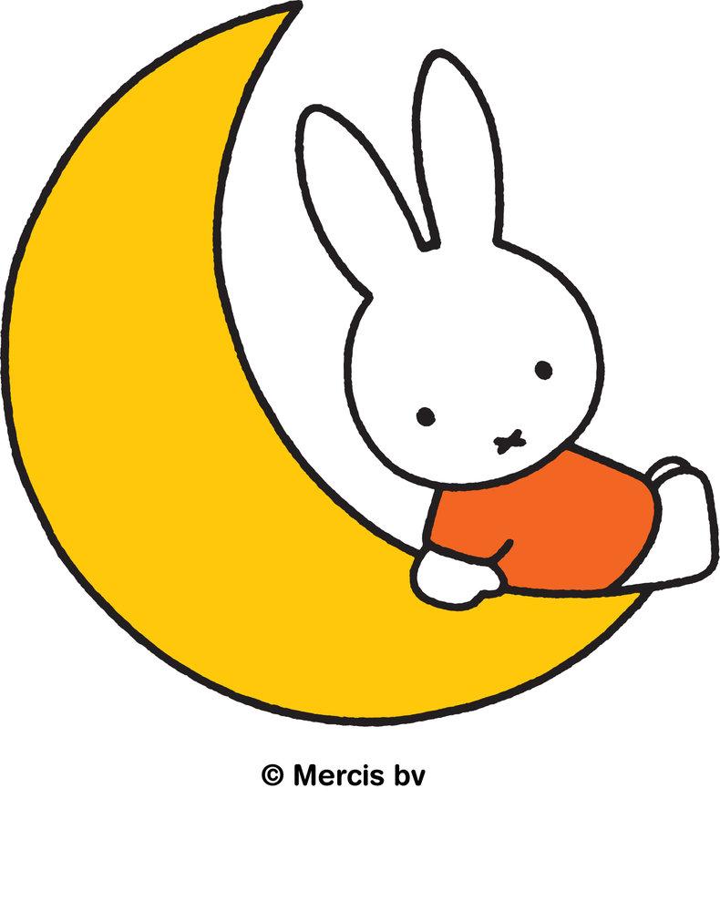 349912 nijntje op de maan logo%20%28online%29 1aff9d large 1584025387
