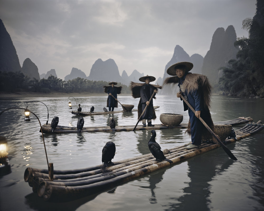298883 xxii467 yangshuo  cormorants   yangshuo  china   2005 full a86f83 large 1544627212