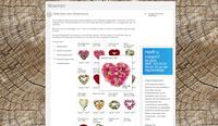 98593 draaiboek bloemen medium 1366118946