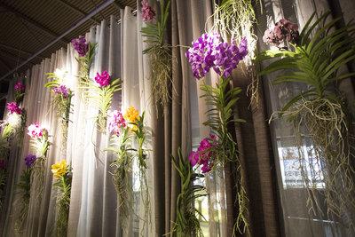 Raumgestalter franÇois hannes prÄsentiert den orchid twister art