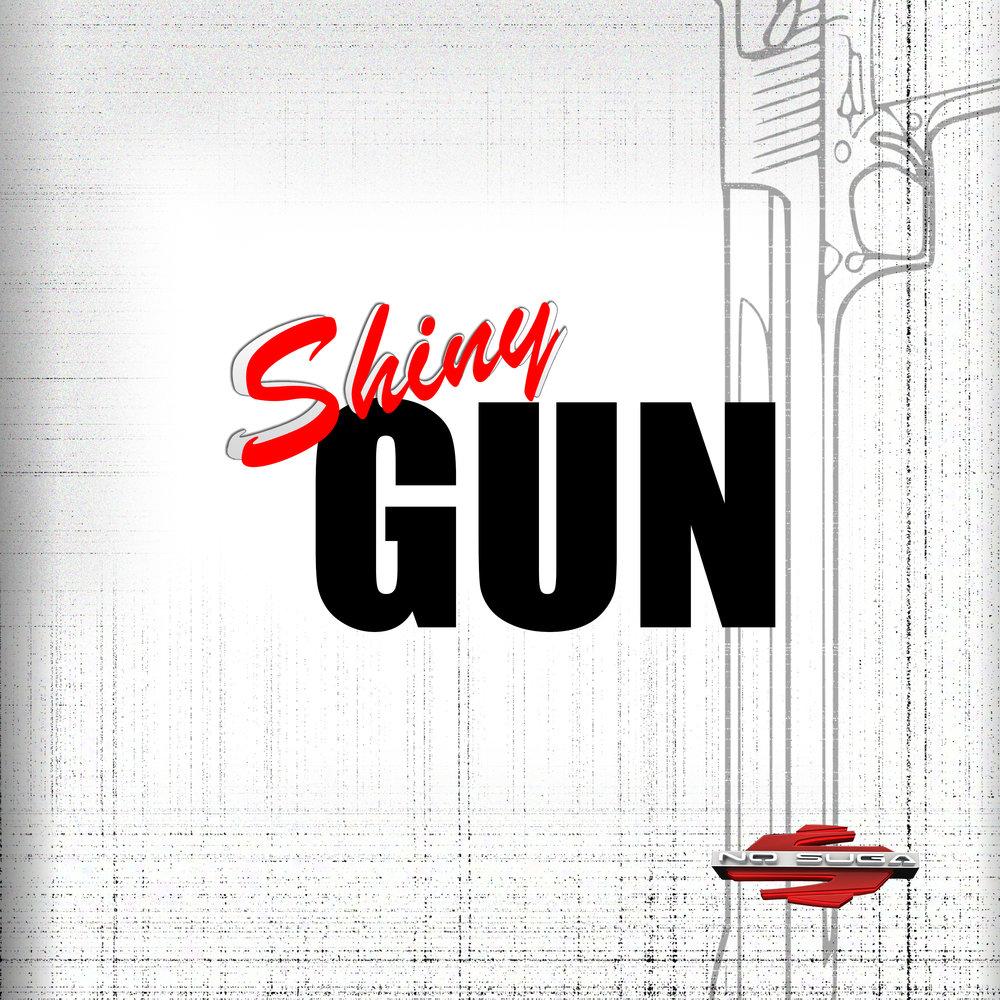 390109 shiny gun 6 08264e large 1620240877
