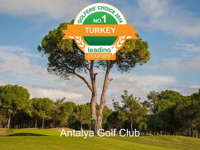 121373 ec309aa7 e4af 48dc 886a e19bcc95df74 golfers  choice nr1 clubs tr medium 1391692250