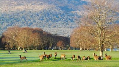 261388 killarney golf %26 fishing club 4608x2592 e80f25 medium 1507720396