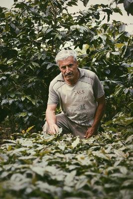 261518 guillermo,%20coffee%20grower 51e436 medium 1507884667