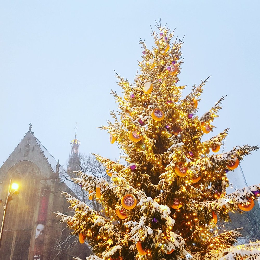 339261 kaaskerstboom%20alkmaar%20marketing e4b0c1 large 1574865547