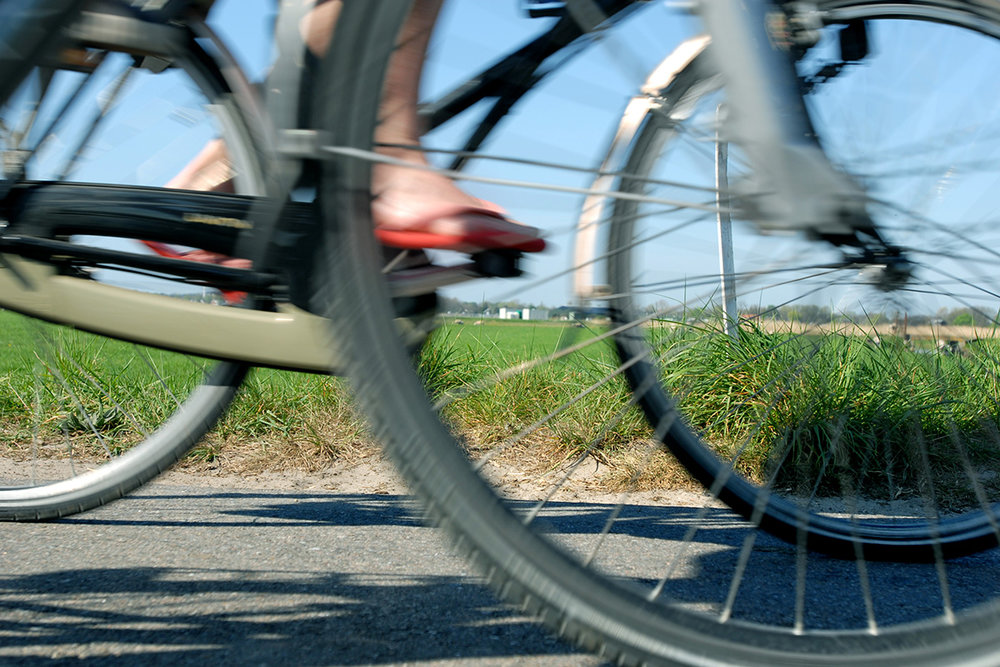 355606  .. images alkmaar%20prachtstad pers beeldbank webversie%201200%20x%20800 fietsen in alkmaar f410ca large 1590752567