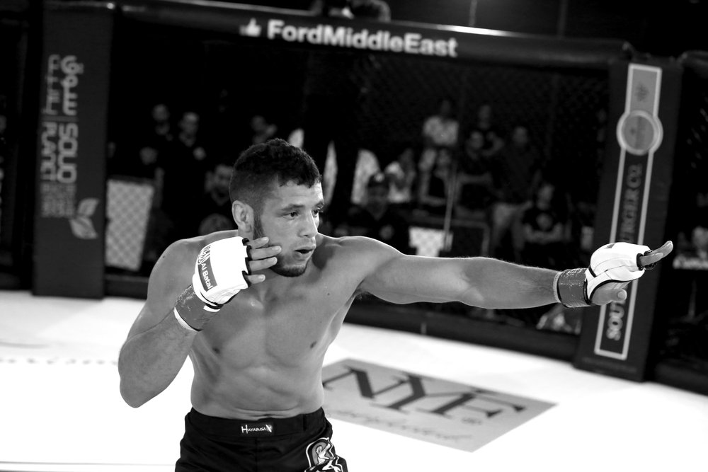 152376 walid%20seghir%20finale%20fight 319a57 large 1419413313