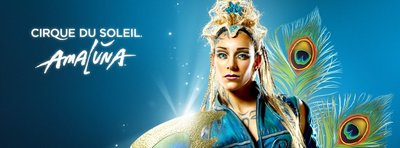 155575 amaluna fb cecf01 medium 1423083732