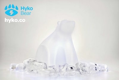 155455 hyko bear with ice happy 375d43 medium 1423041802