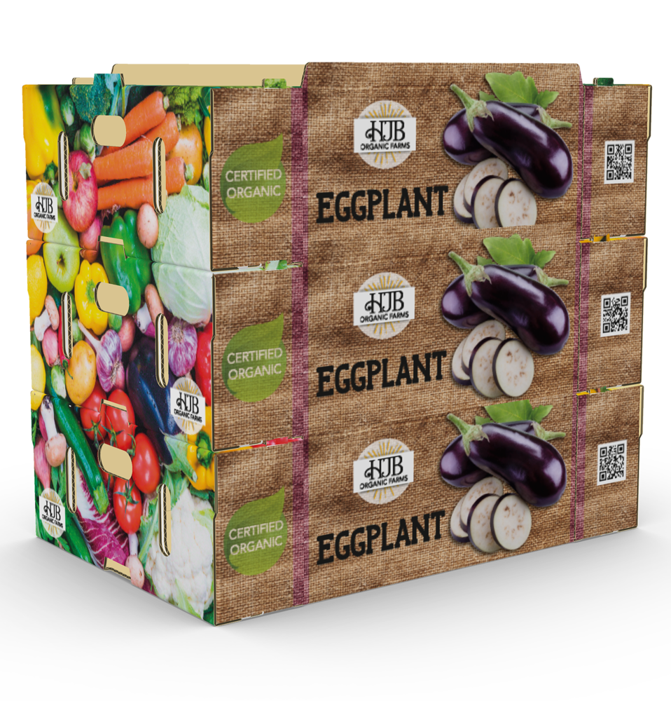 273023 eggplants3 727340 large 1519291209