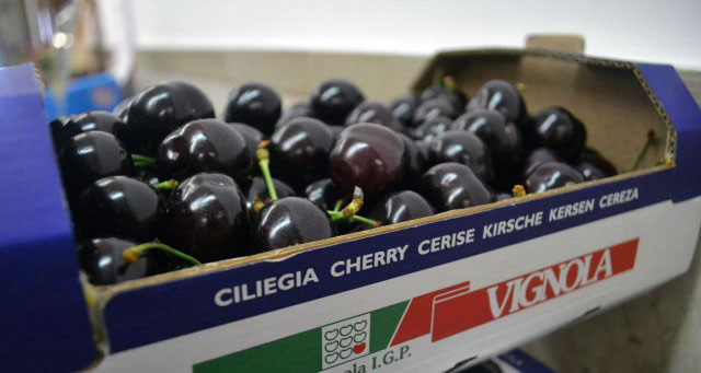 326826 cherries%20packaging%20in%20hp%20corrugated intertech 158a85 original 1565605782