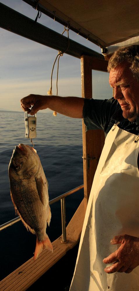 206498 fishing optimized for print mario romulic  drazen stojcic 1 6f33e5 large 1462190252