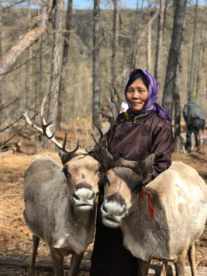 297278 mongolia%20airbnb what3words woman%20with%20reindeer 32 f82373 medium 1543940858