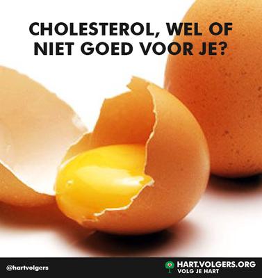 162959 social cholesterol ba98c3 medium 1429026175
