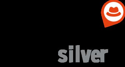 173225 silver%20logo 910f92 medium 1436373580