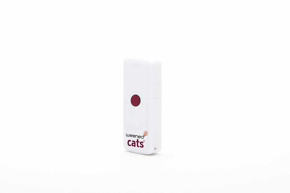 277605 packshot c%c3%b4t%c3%a9 gauche cats d9e930 large 1523548078