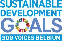 logo SDG voices.png