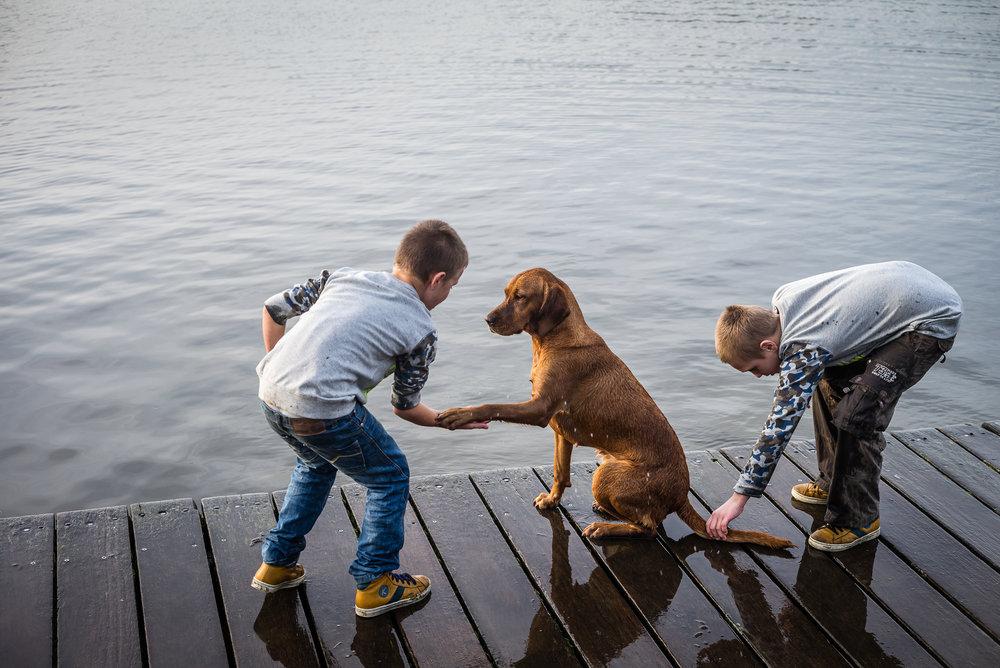 277269 20180126 av hondenzwemplaats%20%284%29 27a56b large 1523290095