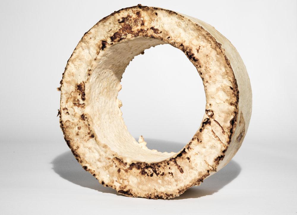 278415 the%20growing%20lab%20 %20mycelia%20%c2%a9officina%20corpuscoli%20 %20maurizio%20montalti%20 %20mycelium%20wheel1 c830df large 1524205307