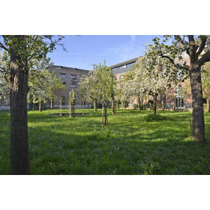 307478 boomgaard%20ferdinand%20lousbergspark d14edf square 1553513057