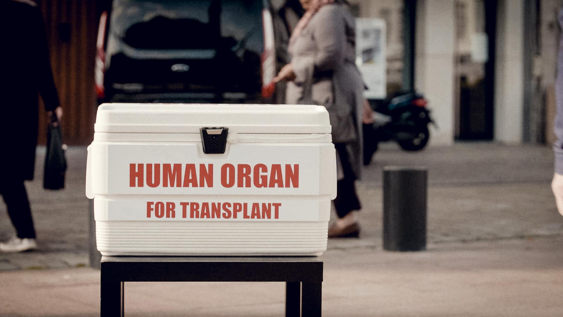 Orgaandonatie.jpg