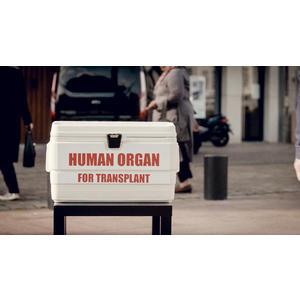 334306 orgaandonatie 7d00e2 square 1570624717
