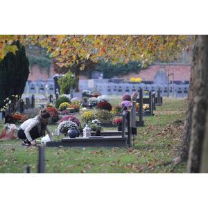 368521 allerheiligen%20begraafplaatsen 984d6a square 1603201259