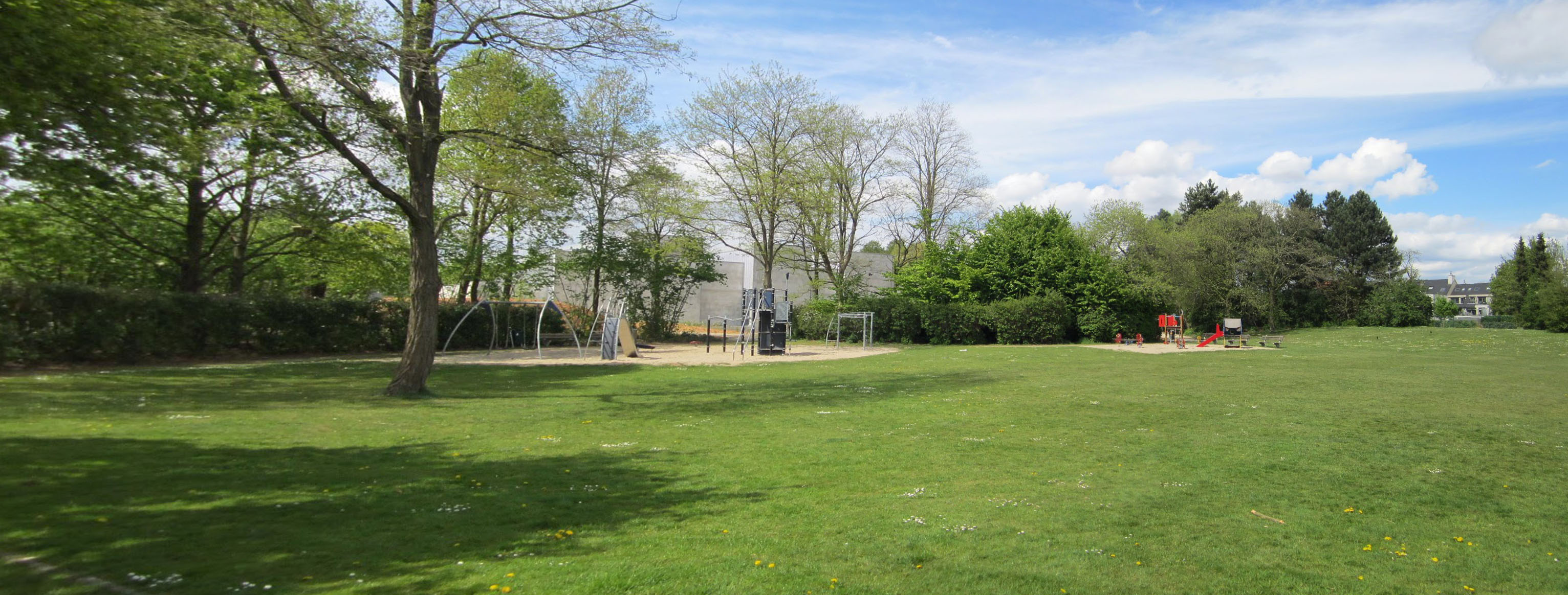 zonnebloempark zone bibliotheek (002).jpg