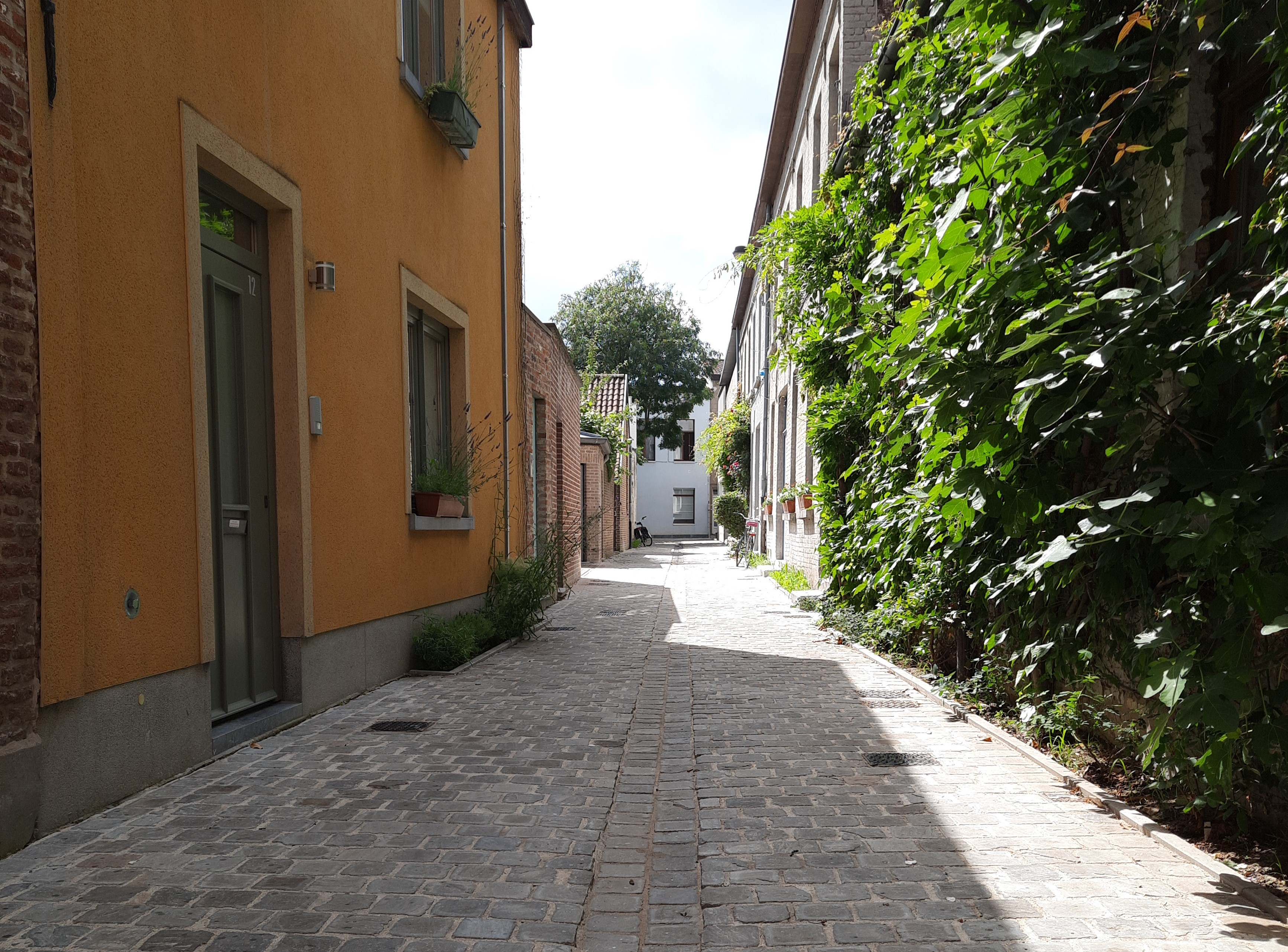 Ook de Varkensstraat aan het Prinsenhof werd volledig heraangelegd.
