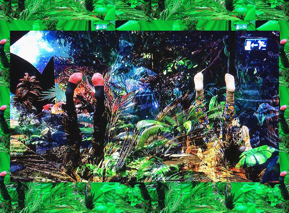 306576 botanicalwasteland landscape 1189ee large 1552663380