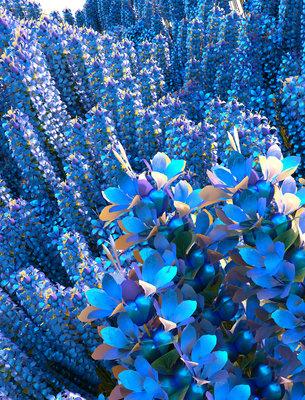 256983 lavender letitgrow web 21c227 medium 1503924621