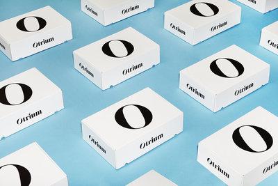269864 otrium boxpattern 01 01 4aa6ff medium 1516095462