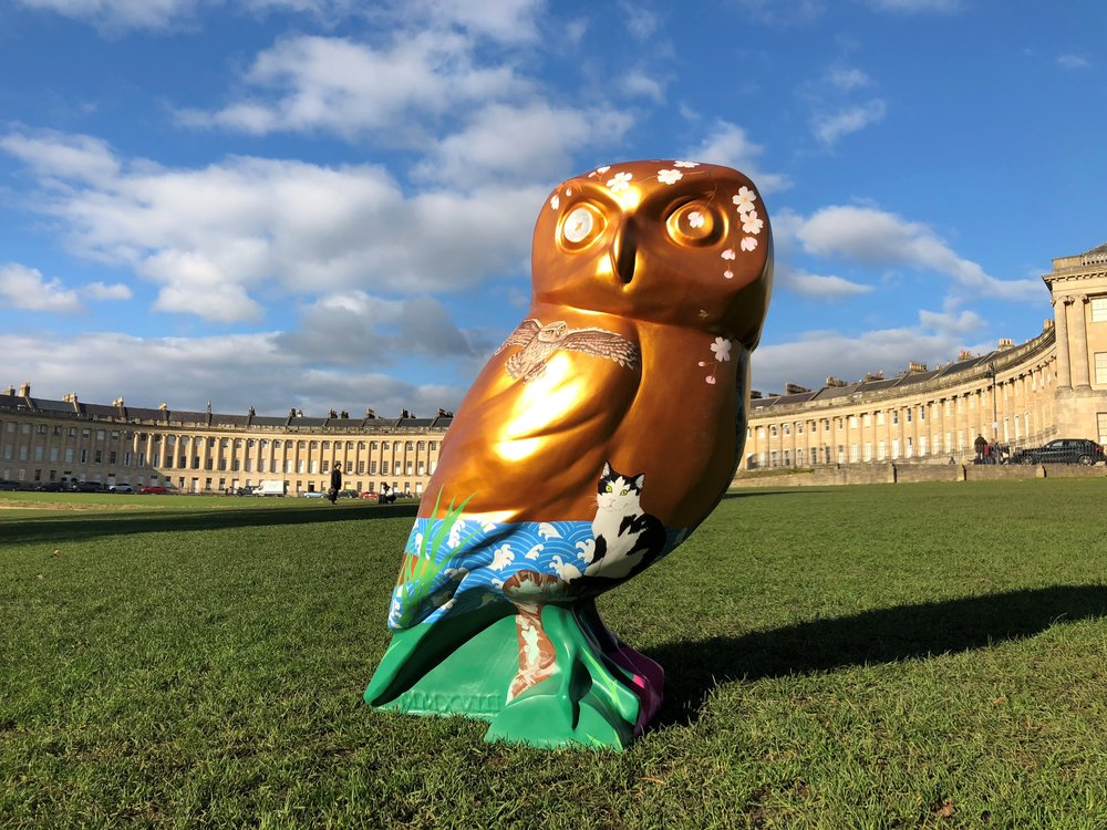 Whoo wants to be an Owl Artist? - Owls of Bath 2018 (news)