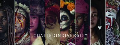 338214 unitedindiversity  1  4c6d19 medium 1573741157