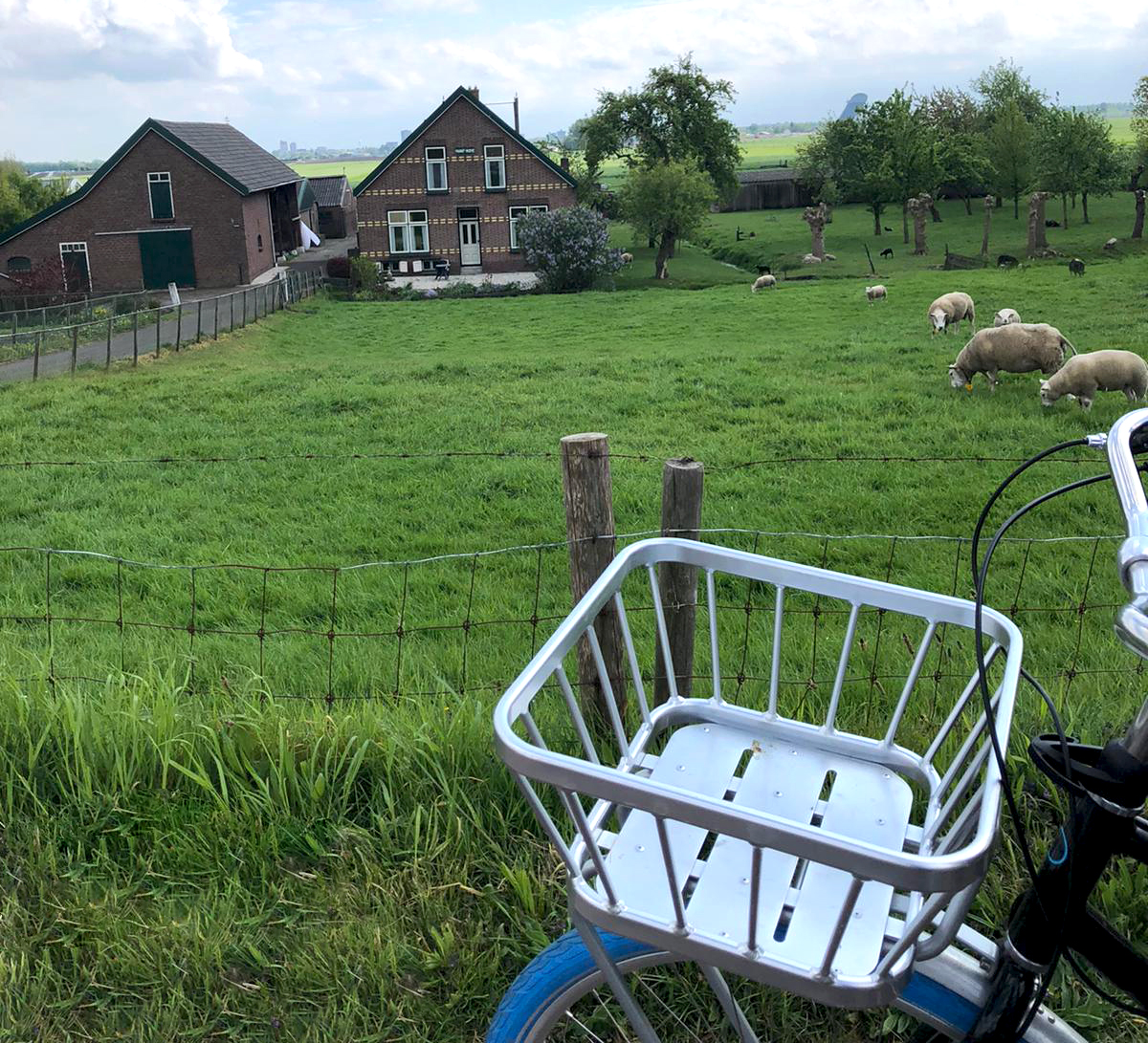 stompwijk_mooi_edit.jpg