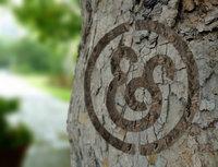 17361 tree lr medium 1365634401